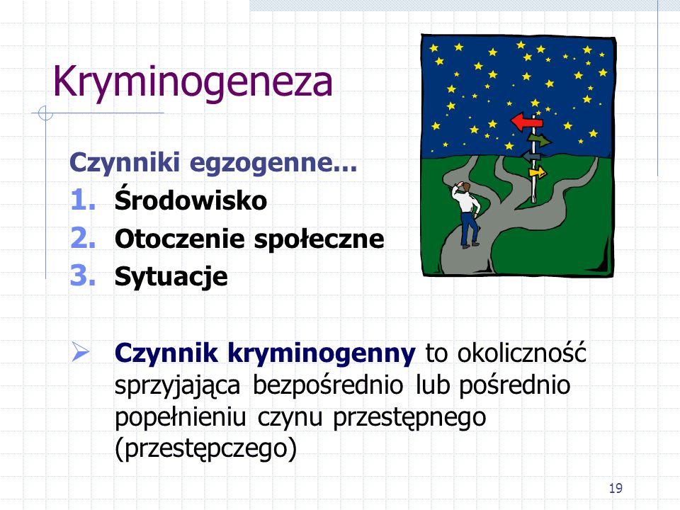 19 Kryminogeneza Czynniki egzogenne... 1. Środowisko 2. Otoczenie społeczne 3. Sytuacje Czynnik kryminogenny to okoliczność sprzyjająca bezpośrednio l
