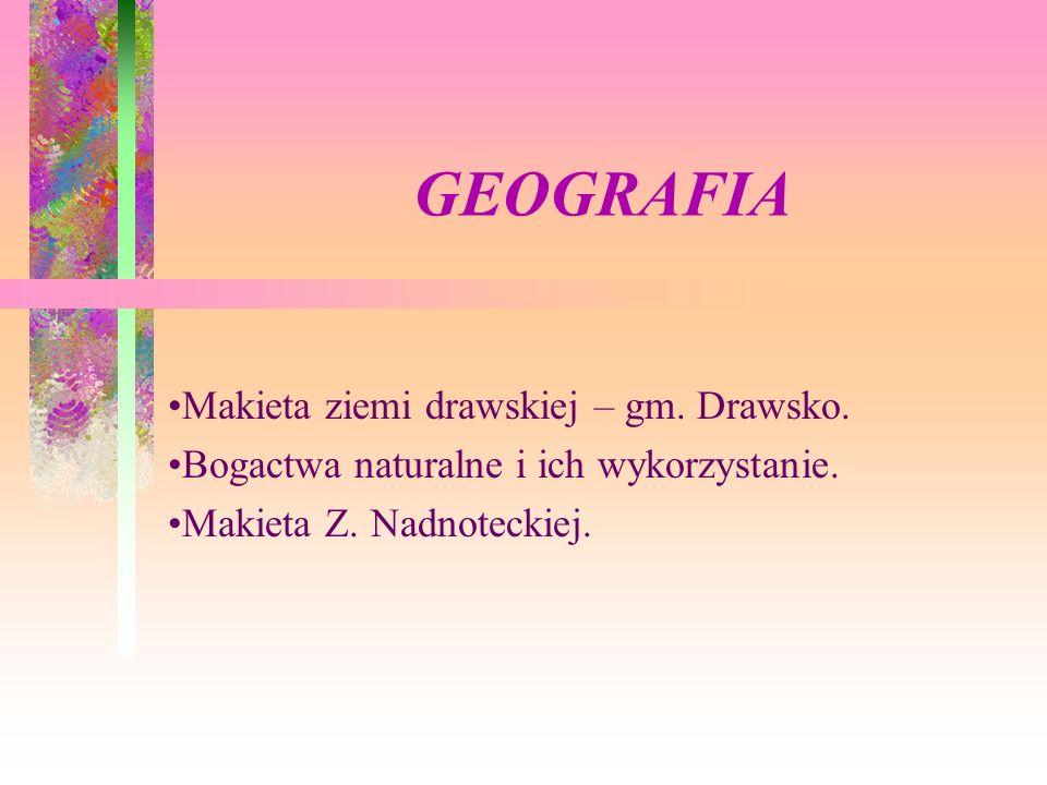 GEOGRAFIA Makieta ziemi drawskiej – gm. Drawsko. Bogactwa naturalne i ich wykorzystanie. Makieta Z. Nadnoteckiej.