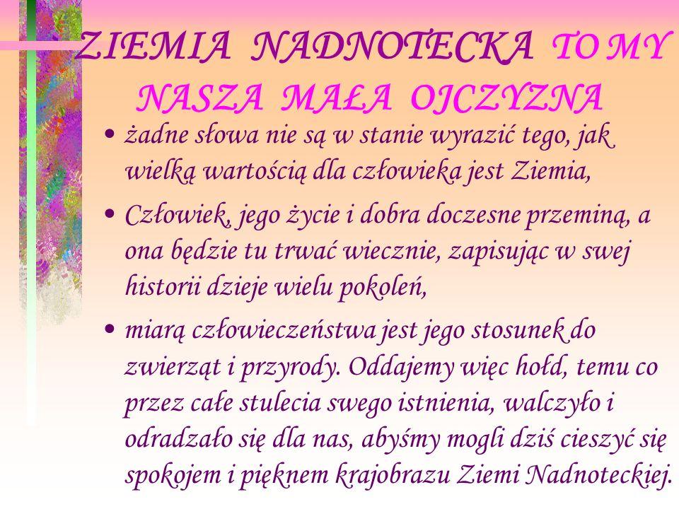 CELE OGÓLNE Poznanie historii Ziemi Nadnoteckiej.