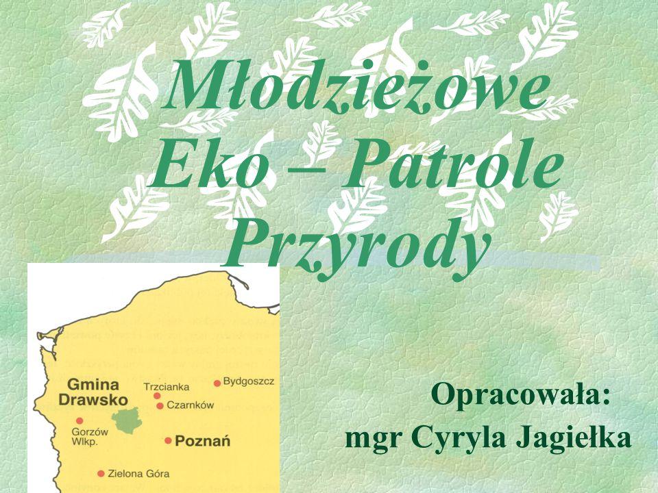 Opis przedsięwzięcia Celem projektu jest powołanie Młodzieżowych Eko – Patroli, których zadaniem będzie opieka oraz patrolowanie i porządkowanie terenu Gminy Drawsko.