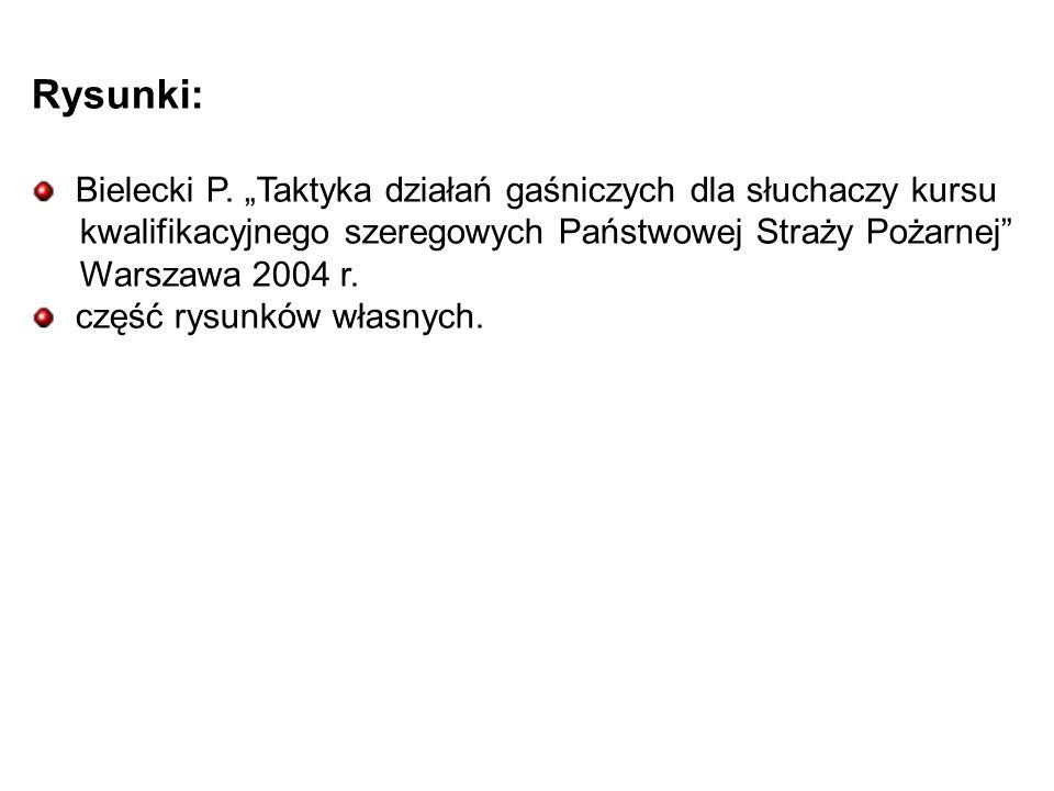 Rysunki: Bielecki P.