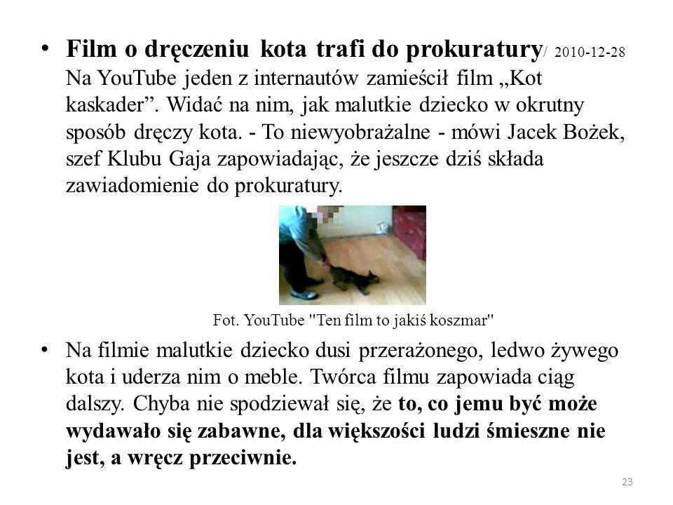 23 Film o dręczeniu kota trafi do prokuratury / 2010-12-28 Na YouTube jeden z internautów zamieścił film Kot kaskader. Widać na nim, jak malutkie dzie