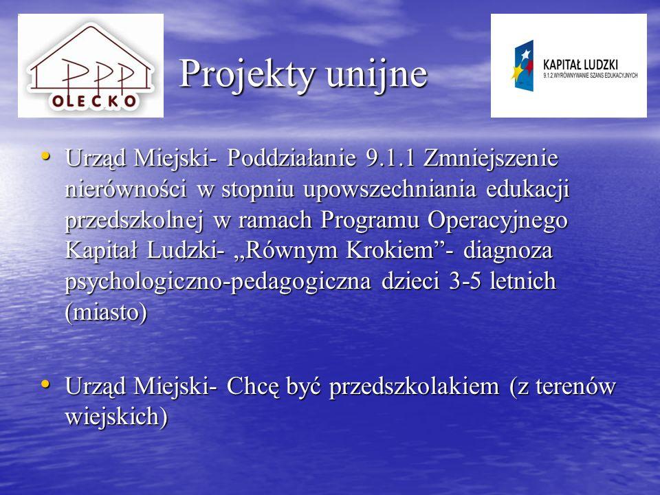 Projekty unijne projekt własny w partnerstwie z Gminą Wieliczki Projekty unijne projekt własny w partnerstwie z Gminą Wieliczki