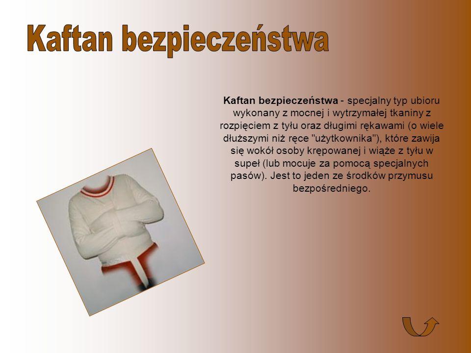 Pałka policyjna - podłużny owalny przedmiot (o typowym rozmiarze: długość ok. 60 cm, średnica ok. 3 cm), zwykle wykonany z elastycznego materiału z rę