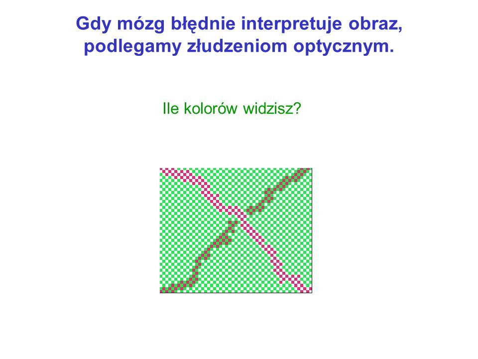 Gdy mózg błędnie interpretuje obraz, podlegamy złudzeniom optycznym. Ile kolorów widzisz?