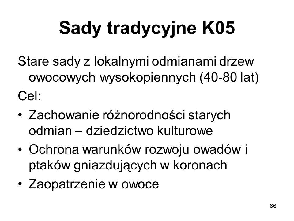 66 Sady tradycyjne K05 Stare sady z lokalnymi odmianami drzew owocowych wysokopiennych (40-80 lat) Cel: Zachowanie różnorodności starych odmian – dzie
