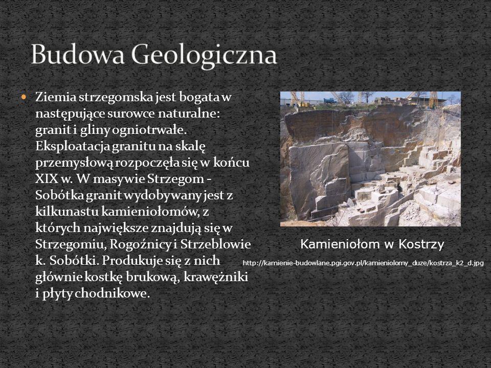 Ziemia strzegomska jest bogata w następujące surowce naturalne: granit i gliny ogniotrwałe. Eksploatacja granitu na skalę przemysłową rozpoczęła się w