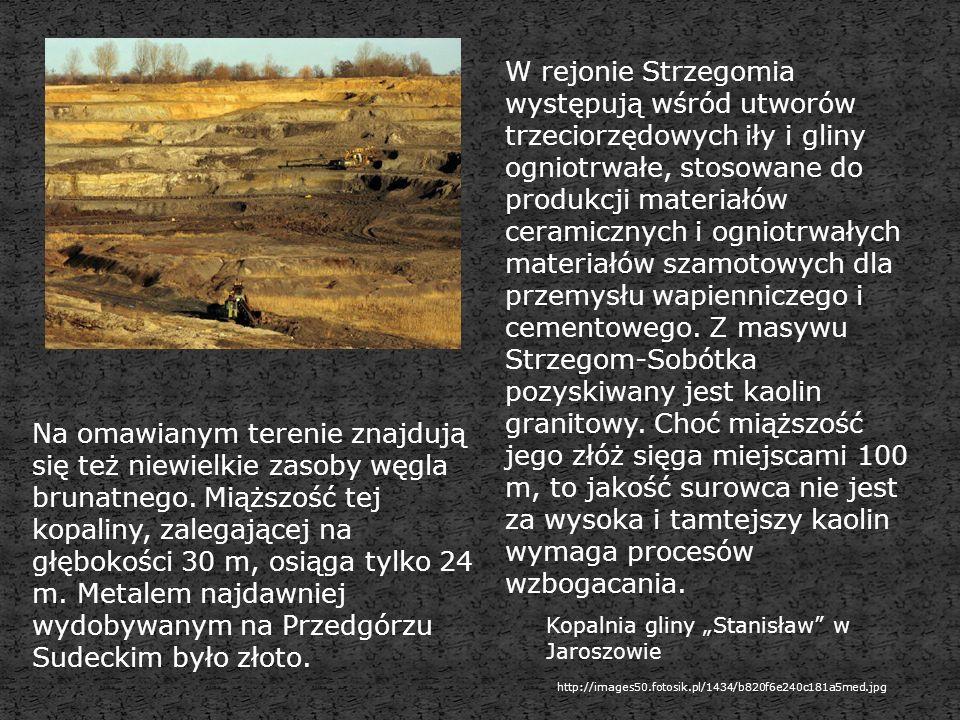 W rejonie Strzegomia występują wśród utworów trzeciorzędowych iły i gliny ogniotrwałe, stosowane do produkcji materiałów ceramicznych i ogniotrwałych