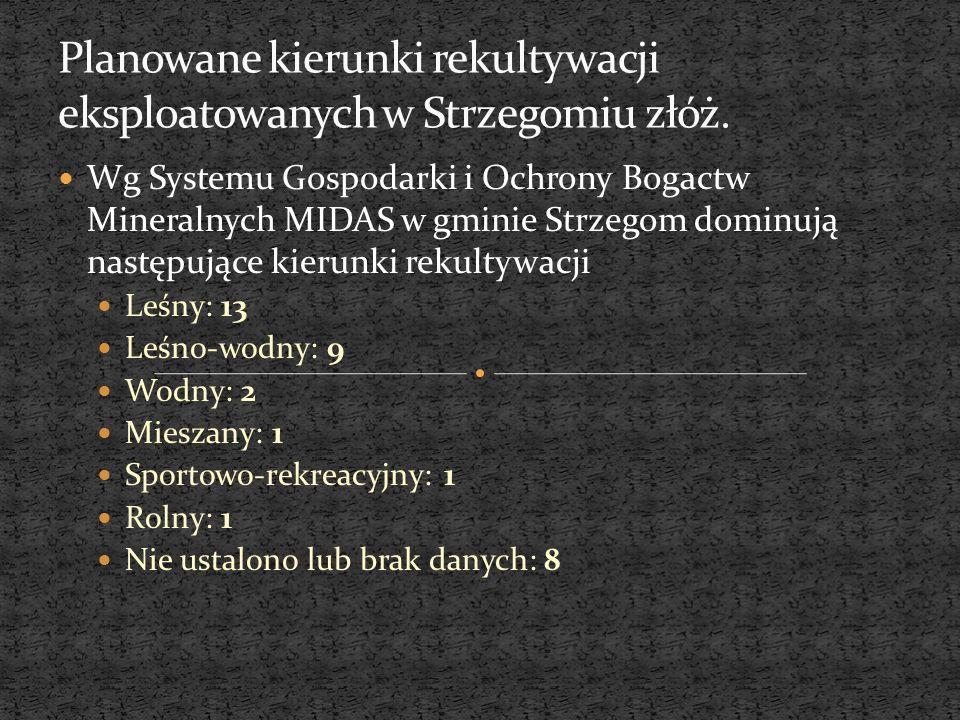 Wg Systemu Gospodarki i Ochrony Bogactw Mineralnych MIDAS w gminie Strzegom dominują następujące kierunki rekultywacji Leśny: 13 Leśno-wodny: 9 Wodny: