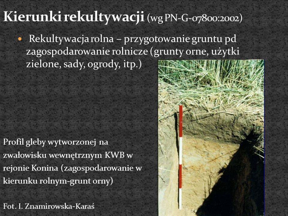 Rekultywacja leśna – przygotowanie gruntu pod zagospodarowanie leśne (lasy produkcyjne, ochronne, itp.) Zwałowisko wewnętrzne O/Bełchatów, widok zrekultywowanego zbocza wschodniego http://www.ppwb.org.pl/wb/54/4.php Część zachodnia zwałowiska skały płonnej KWK 1 Maja została zrekultywowana w kierunku leśnym.