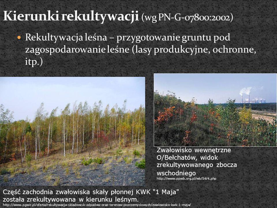 Rekultywacja leśna – przygotowanie gruntu pod zagospodarowanie leśne (lasy produkcyjne, ochronne, itp.) Zwałowisko wewnętrzne O/Bełchatów, widok zreku