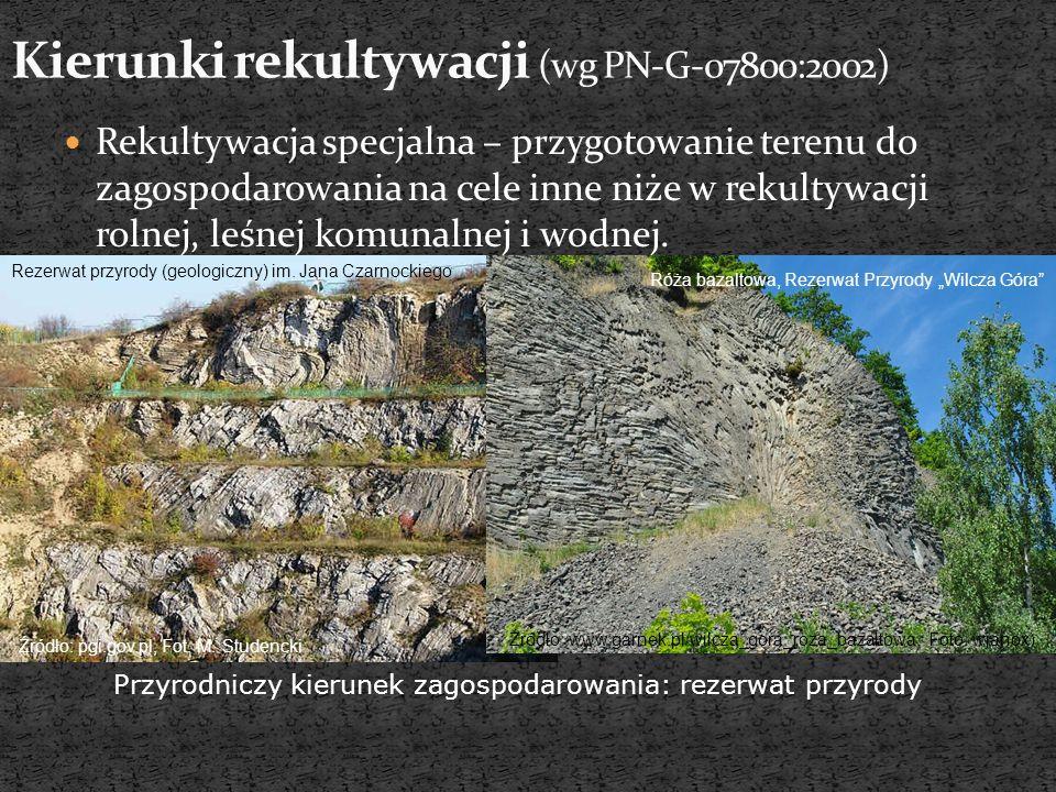 http://fotopolska.eu/142856,foto.html Fot. B. Jawecki