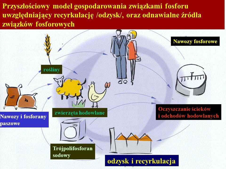 Przyszłościowy model gospodarowania związkami fosforu uwzględniający recyrkulację /odzysk/, oraz odnawialne źródła związków fosforowych Nawozy i fosfo