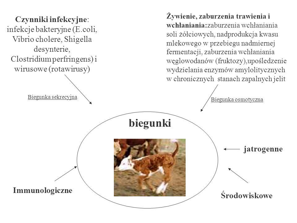 jatrogenne Środowiskowe biegunki Czynniki infekcyjne: infekcje bakteryjne (E.coli, Vibrio cholere, Shigella desynterie, Clostridium perfringens) i wir
