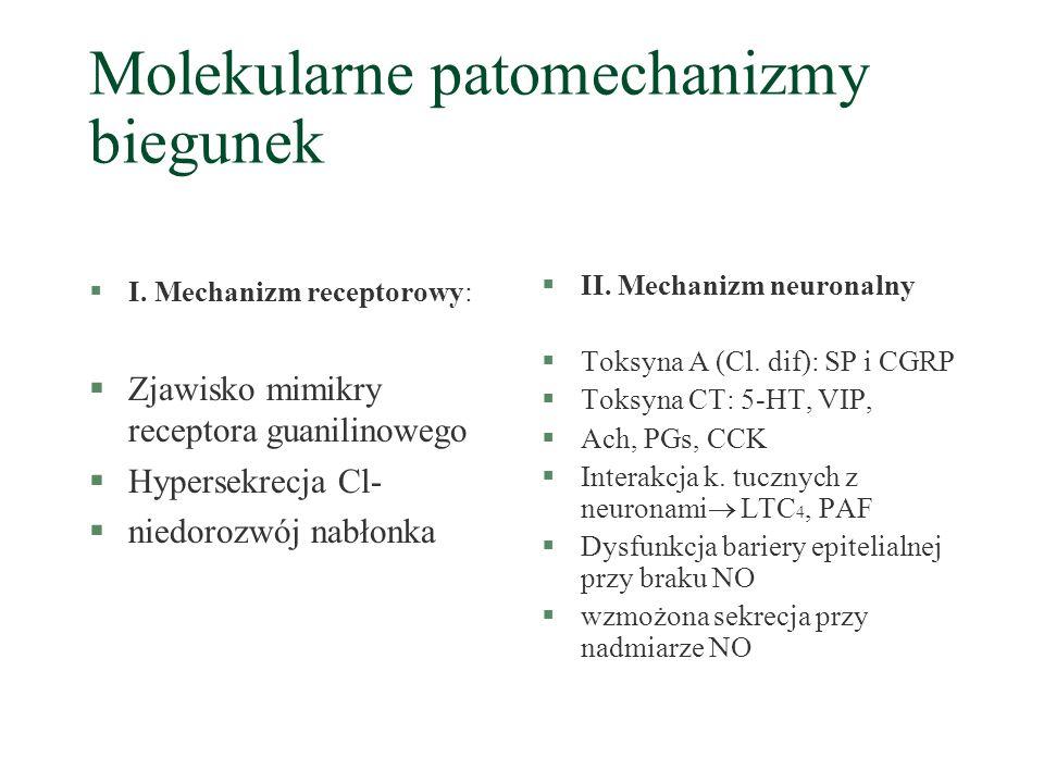 Molekularne patomechanizmy biegunek §I. Mechanizm receptorowy: §Zjawisko mimikry receptora guanilinowego §Hypersekrecja Cl- §niedorozwój nabłonka §II.