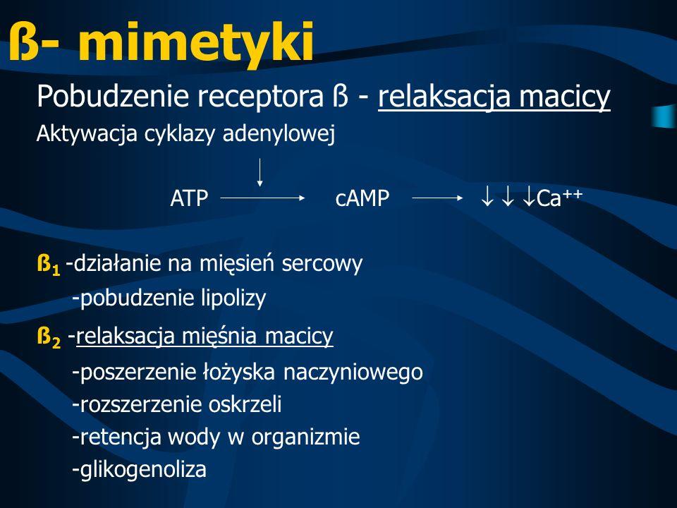 ß- mimetyki Pobudzenie receptora ß - relaksacja macicy Aktywacja cyklazy adenylowej ATP cAMP Ca ++ ß 1 -działanie na mięsień sercowy -pobudzenie lipol