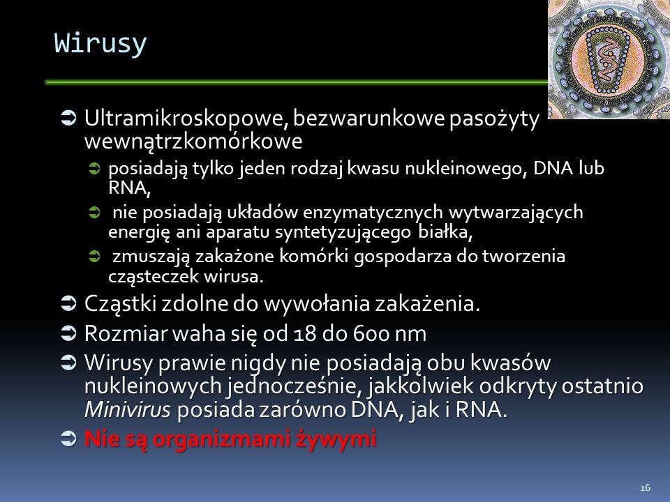 Wirusy Ultramikroskopowe, bezwarunkowe pasożyty wewnątrzkomórkowe Ultramikroskopowe, bezwarunkowe pasożyty wewnątrzkomórkowe posiadają tylko jeden rod