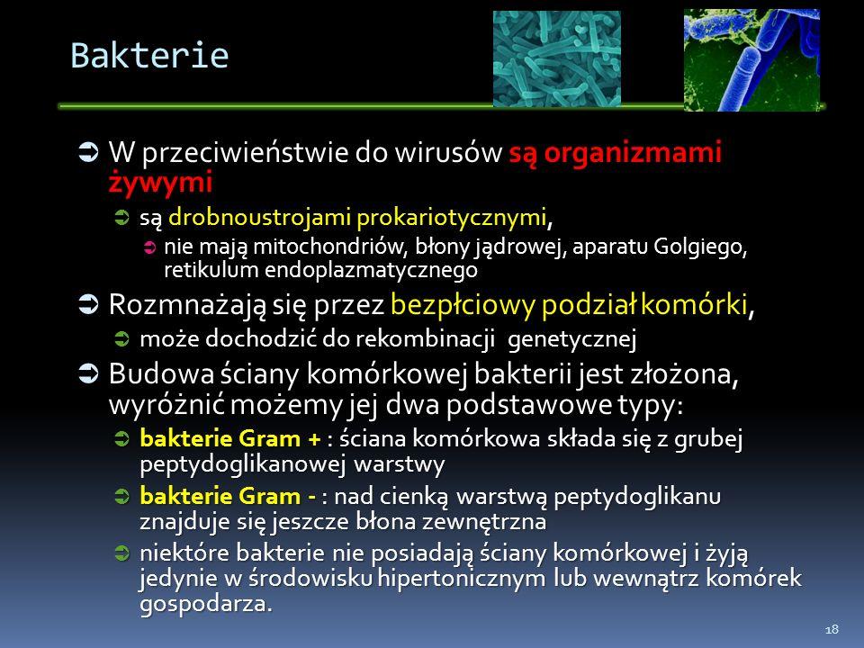 Bakterie W przeciwieństwie do wirusów są organizmami żywymi W przeciwieństwie do wirusów są organizmami żywymi są drobnoustrojami prokariotycznymi, są
