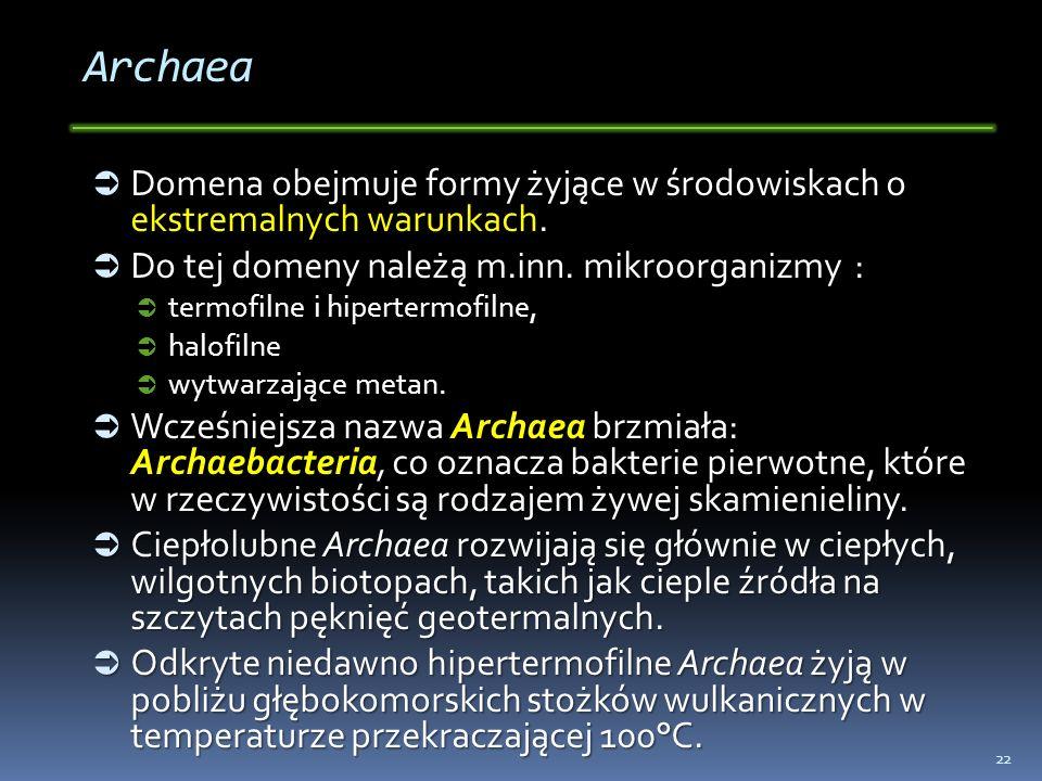 Archaea Domena obejmuje formy żyjące w środowiskach o ekstremalnych warunkach. Domena obejmuje formy żyjące w środowiskach o ekstremalnych warunkach.