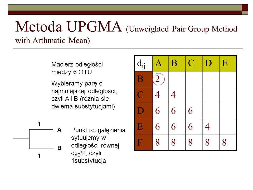 Metoda UPGMA (Unweighted Pair Group Method with Arthmatic Mean) d ij ABCDE B2 C44 D666 E6664 F88888 Macierz odległości miedzy 6 OTU Wybieramy parę o n