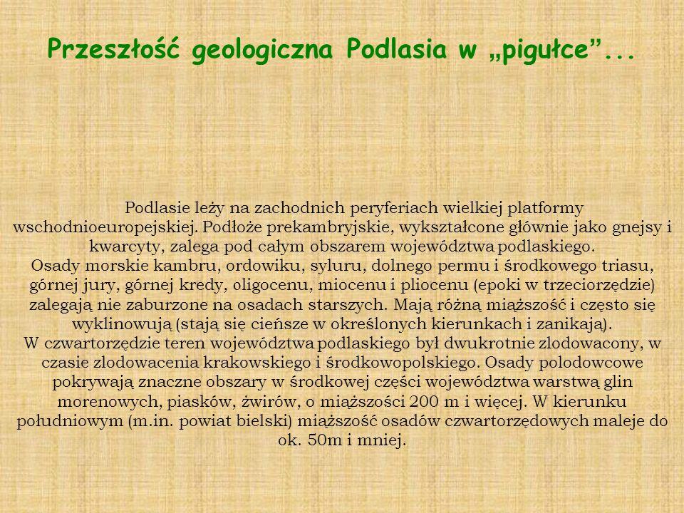 Przeszłość geologiczna Podlasia w pigułce...