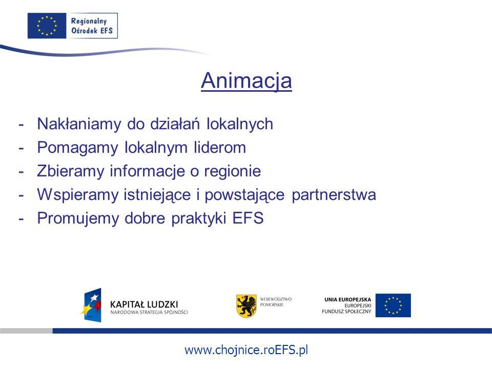 www.chojnice.roEFS.pl Animacja -Nakłaniamy do działań lokalnych -Pomagamy lokalnym liderom -Zbieramy informacje o regionie -Wspieramy istniejące i pow