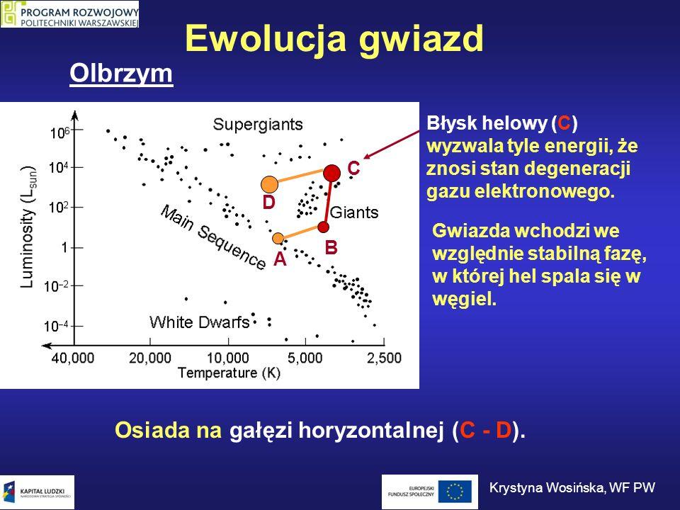 C B D A Ewolucja gwiazd Błysk helowy (C) wyzwala tyle energii, że znosi stan degeneracji gazu elektronowego. Gwiazda wchodzi we względnie stabilną faz