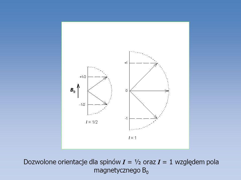 Dozwolone orientacje dla spinów I = ½ oraz I = 1 względem pola magnetycznego B 0