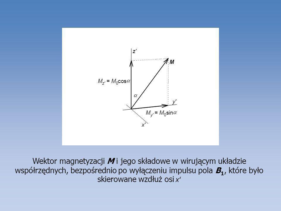Wektor magnetyzacji M i jego składowe w wirującym układzie współrzędnych, bezpośrednio po wyłączeniu impulsu pola B 1, które było skierowane wzdłuż os