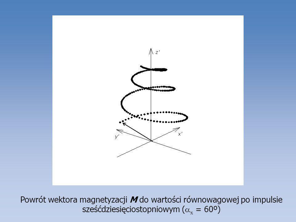 Przebieg zmian magnetyzacji poprzecznej podczas pomiaru pierwszego echa spinowego (a) likwidacja wpływu niejednorodności pola B 0, przesunięć chemicznych i heterojądrowych stałych sprzężeń spinowo-spinowych; (b) te same zmiany z uwzględnieniem relaksacji, dyfuzji i ewentualnej wymiany chemicznej.