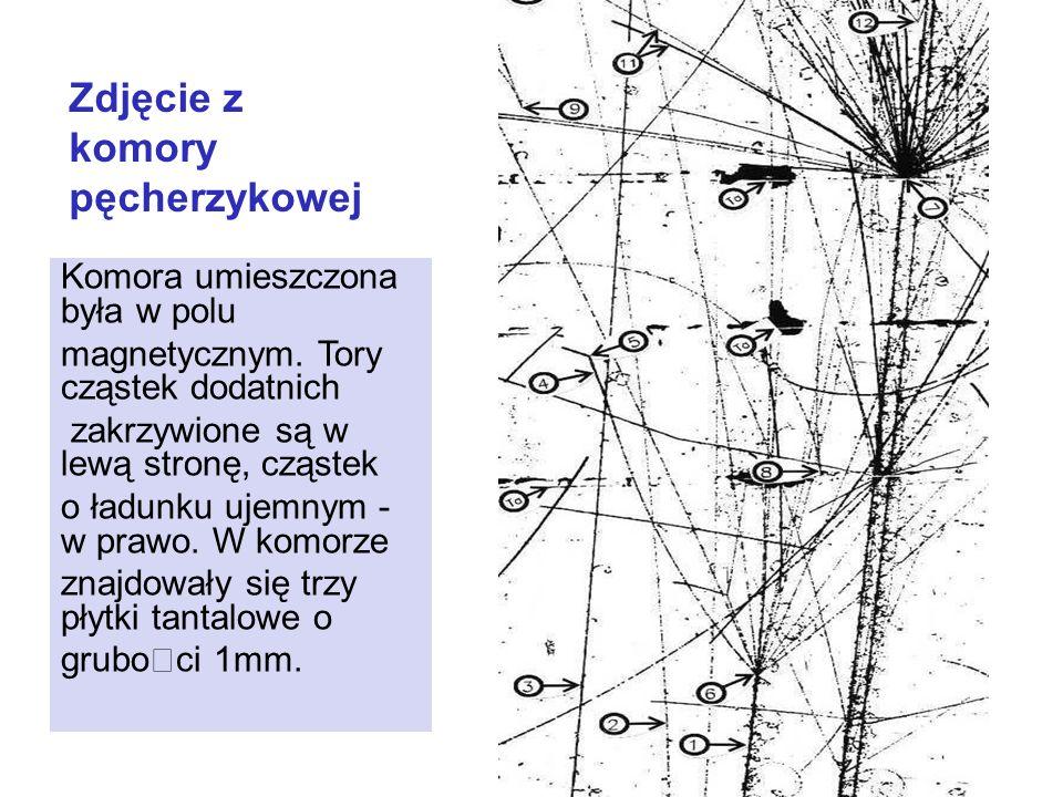 Zdjęcie z komory pęcherzykowej Komora umieszczona była w polu magnetycznym. Tory cząstek dodatnich zakrzywione są w lewą stronę, cząstek o ładunku uje