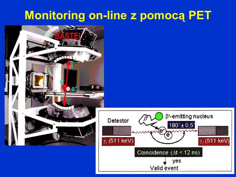 Monitoring on-line z pomocą PET