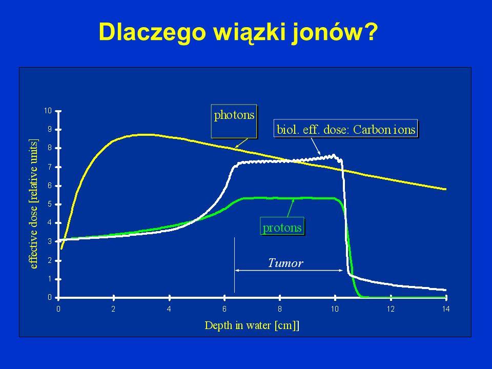 Jon węgla deponuje w komórce około 23 razy więcej energii niż proton o tym samym zasięgu.