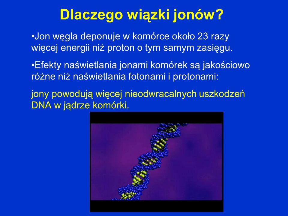Definicja RBE (Relative Biological Effectiveness) RBE zależy od dawki, LET (Linear Energy Transfer), typu komórki…