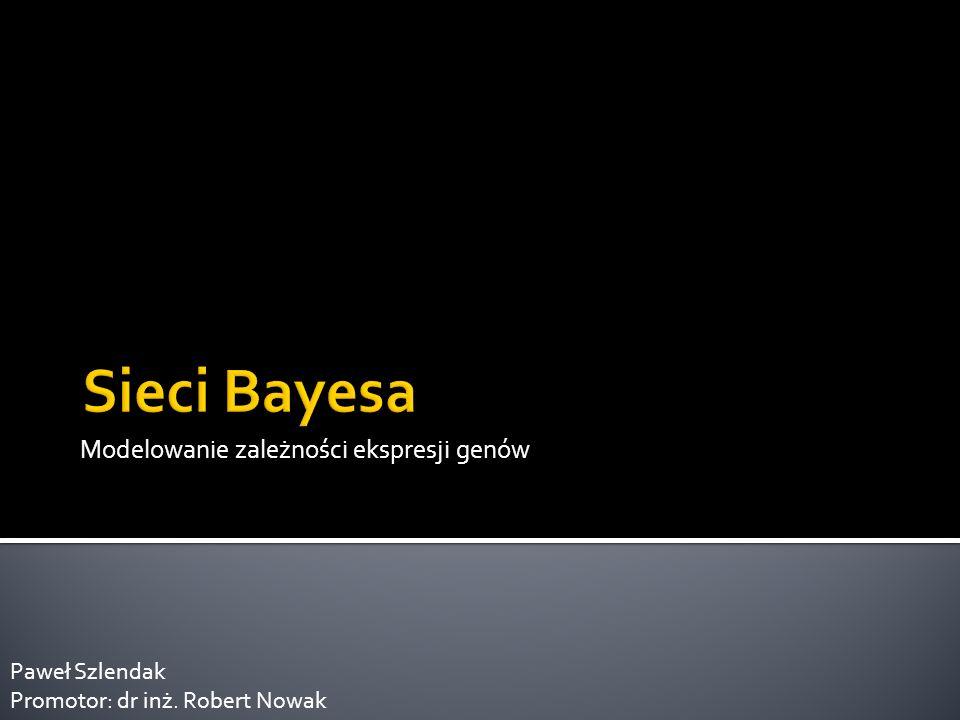 Modelowanie zależności ekspresji genów Paweł Szlendak Promotor: dr inż. Robert Nowak
