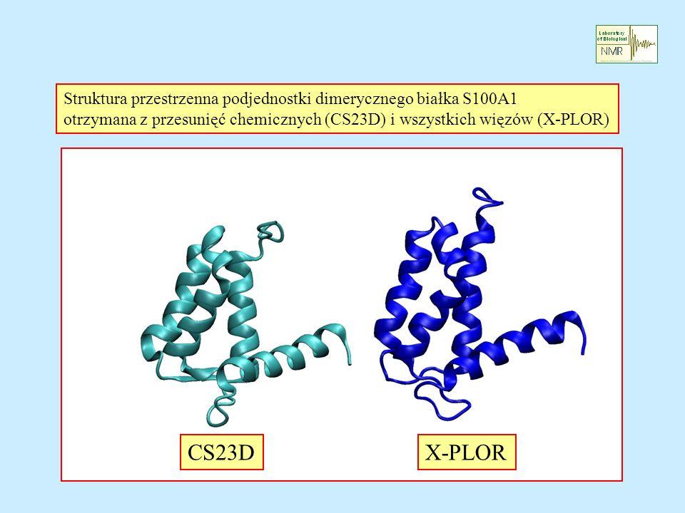 CS23DX-PLOR Struktura przestrzenna podjednostki dimerycznego białka S100A1 otrzymana z przesunięć chemicznych (CS23D) i wszystkich więzów (X-PLOR)