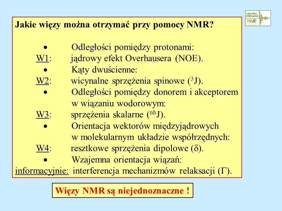 Jakie więzy można otrzymać przy pomocy NMR? Odległości pomiędzy protonami: W1: jądrowy efekt Overhausera (NOE). Kąty dwuścienne: W2: wicynalne sprzęże