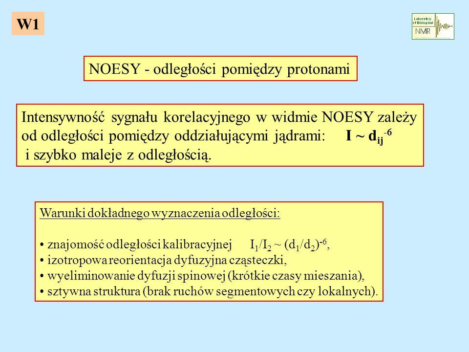 NOESY - odległości pomiędzy protonami Intensywność sygnału korelacyjnego w widmie NOESY zależy od odległości pomiędzy oddziałującymi jądrami: I ~ d ij