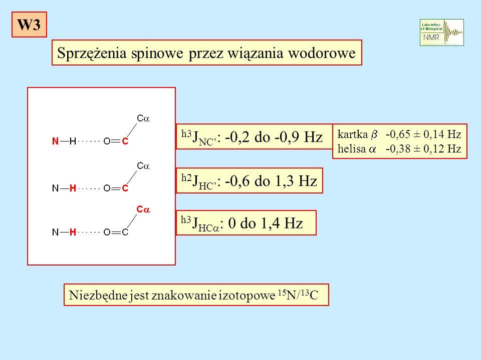 Sprzężenia spinowe przez wiązania wodorowe h3 J NC : -0,2 do -0,9 Hz h2 J HC : -0,6 do 1,3 Hz h3 J HC : 0 do 1,4 Hz Niezbędne jest znakowanie izotopow