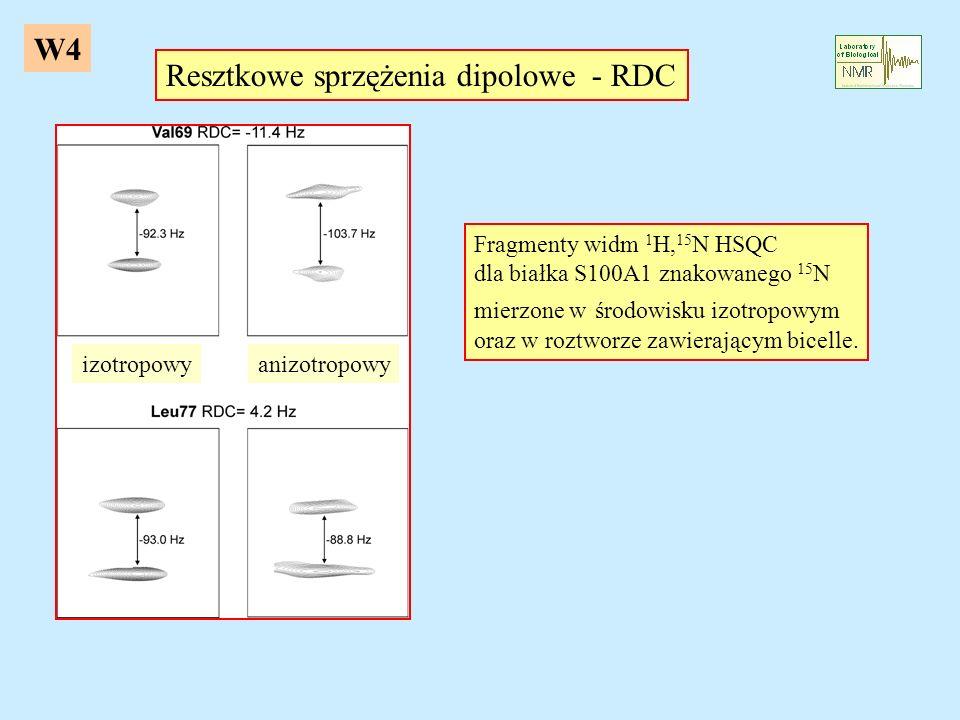 W4 Resztkowe sprzężenia dipolowe - RDC Fragmenty widm 1 H, 15 N HSQC dla białka S100A1 znakowanego 15 N mierzone w środowisku izotropowym oraz w roztw