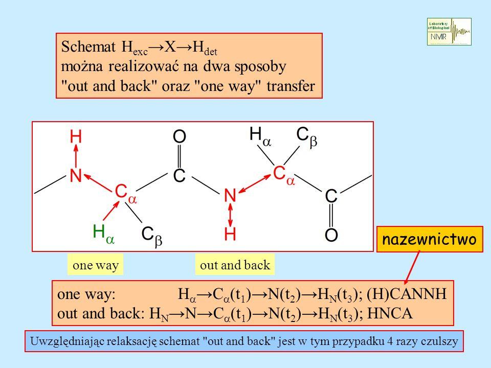 Schemat H exc XH det można realizować na dwa sposoby