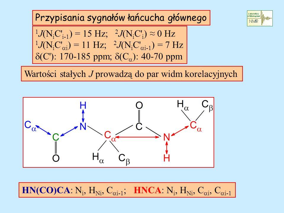 Przypisania sygnałów łańcucha głównego 1 J(N i C' i-1 ) = 15 Hz; 2 J(N i C' i ) 0 Hz 1 J(N i C' i ) = 11 Hz; 2 J(N i C' i-1 ) = 7 Hz (C'): 170-185 ppm