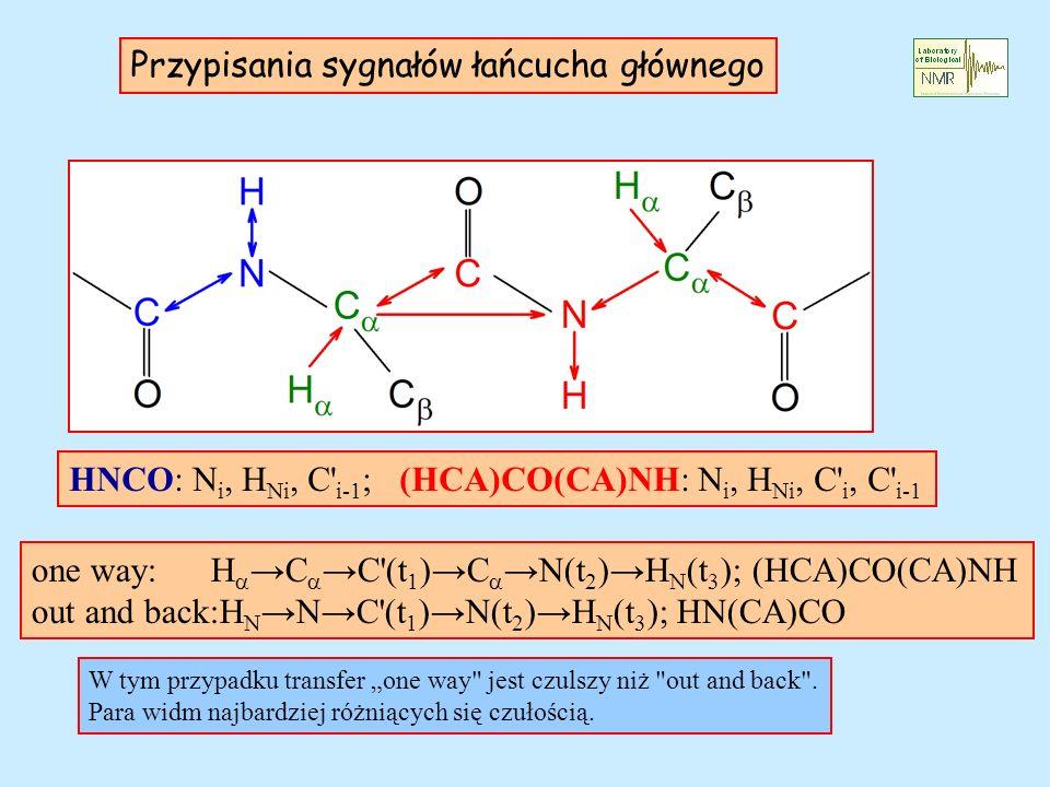 Przypisania sygnałów łańcucha głównego HNCO: N i, H Ni, C' i-1 ; (HCA)CO(CA)NH: N i, H Ni, C' i, C' i-1 one way: HC C'(t 1 )CN(t 2 ) H N (t 3 ); (HCA)