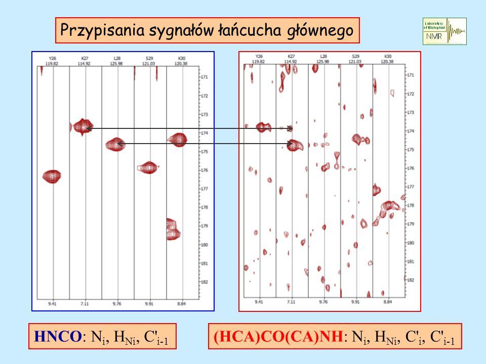 Przypisania sygnałów łańcucha głównego HNCO: N i, H Ni, C' i-1 (HCA)CO(CA)NH: N i, H Ni, C' i, C' i-1