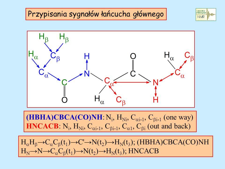 Przypisania sygnałów łańcucha głównego H H C C (t 1 ) C'N(t 2 ) H N (t 3 ); (HBHA)CBCA(CO)NH H NN C C (t 1 ) N(t 2 ) H N (t 3 ); HNCACB (HBHA)CBCA(CO)