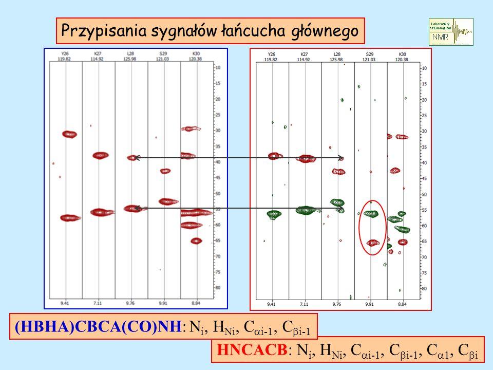 Przypisania sygnałów łańcucha głównego HNCACB: N i, H Ni, C i-1, C i-1, C 1, C i (HBHA)CBCA(CO)NH: N i, H Ni, C i-1, C i-1