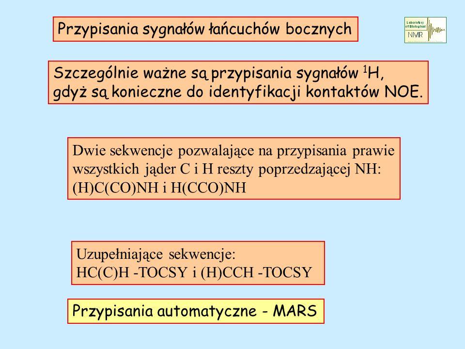 Przypisania sygnałów łańcuchów bocznych Szczególnie ważne są przypisania sygnałów 1 H, gdyż są konieczne do identyfikacji kontaktów NOE. Dwie sekwencj