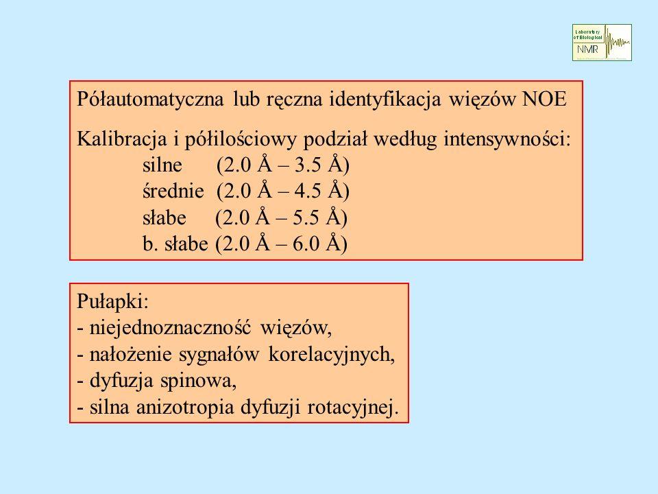Półautomatyczna lub ręczna identyfikacja więzów NOE Kalibracja i półilościowy podział według intensywności: silne (2.0 Å – 3.5 Å) średnie (2.0 Å – 4.5