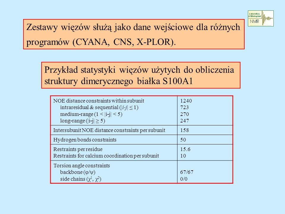 Zestawy więzów służą jako dane wejściowe dla różnych programów (CYANA, CNS, X-PLOR). Przykład statystyki więzów użytych do obliczenia struktury dimery