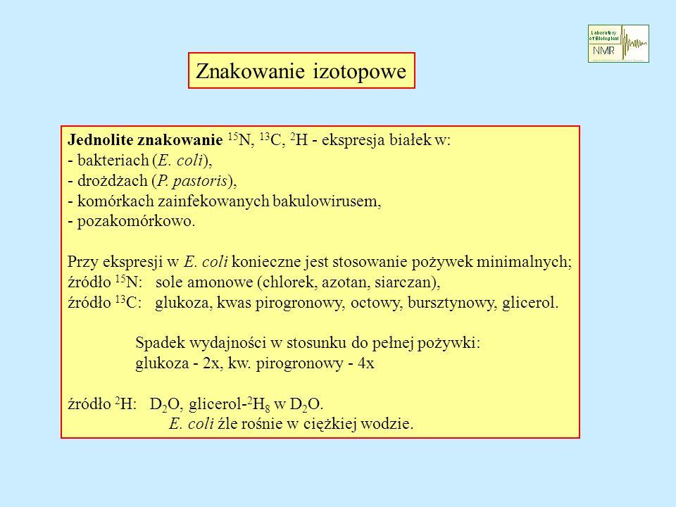 Znakowanie izotopowe Jednolite znakowanie 15 N, 13 C, 2 H - ekspresja białek w: - bakteriach (E. coli), - drożdżach (P. pastoris), - komórkach zainfek
